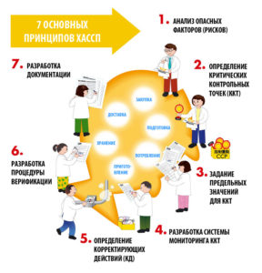7 принципов ХАССП