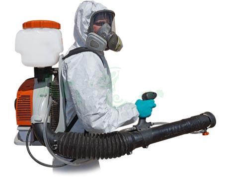 Уничтожение домашних насекомых в Сочи